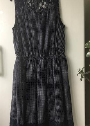 Платье zara синее в горошек с кружевом