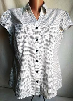 Блузка dorothy perkins, кофточка, хлопковая, летняя
