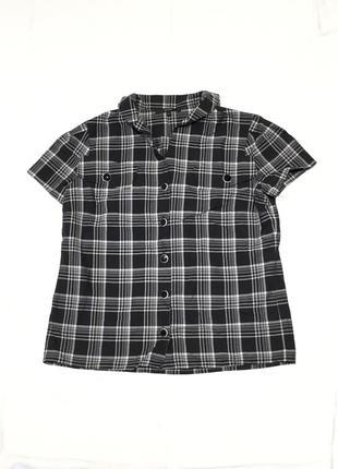 Рубашка блуза gucci3 фото
