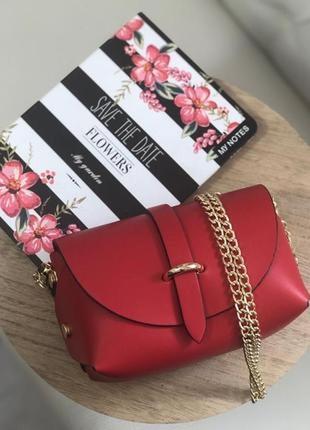 Маленькая кожаная сумочка италия красная сумка