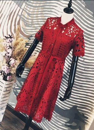 Платье кружево марсала с поясом в стиле zara, темно красное миди на пушовицах