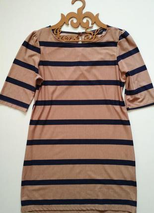 Фирменное платье dorothy perkins, размер 10/38