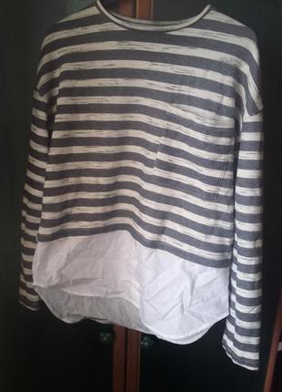 Блуза рубашка в  полоску сорочка кофта свитер світер светр кофточка свитшот