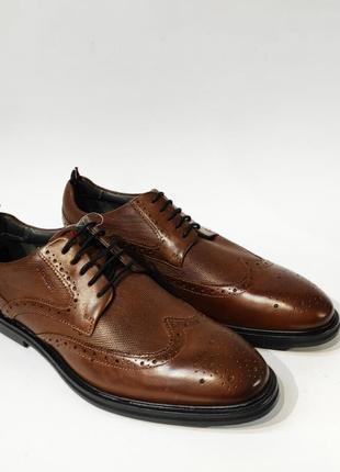 Туфлі шкіряні strellson коричневі чоловічі нові туфли