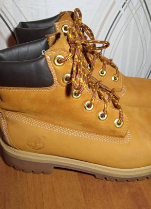Классные ботиночки тимберланд