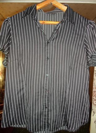 Блуза для офиса в полоску
