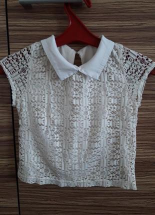 🌞кружевной кроп топ футболка блуза с воротником укороченная