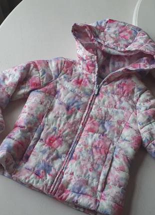 Куртка демисезон zara 5-7 лет, 122 см, цветная, с капюшоном, короткая, синтепон