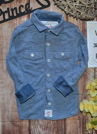 Классная трикотажная рубашечка next 3-4 года (104)