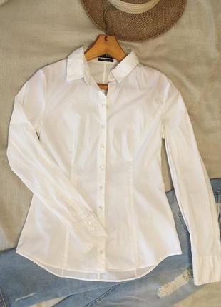 Mark o polo стильная базовая белая рубашка супер качества ( хлопок)