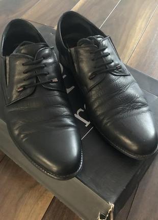 Шкіряні туфлі prego