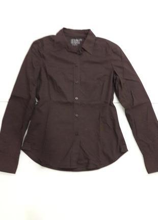 Рубашка esprit италия новая коллекция распродажа!