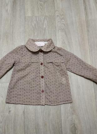 Рубашка, сорочка, блузка
