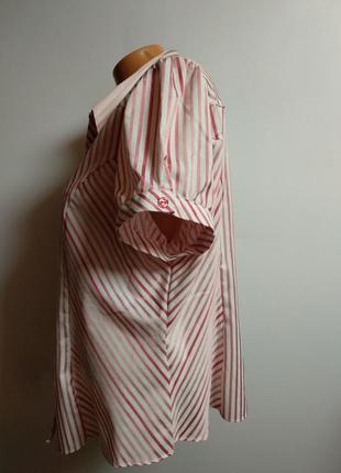 Красивая рубашка в полоску с люрексом 20/54-56 размера5 фото