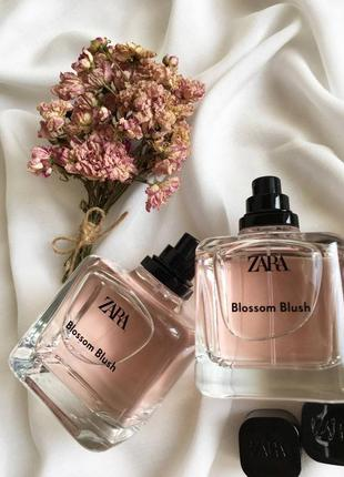 Blossom blush zara
