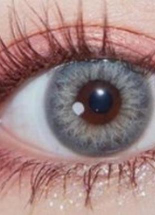 Линзы цветные для глаз тейлор, серые + контейнер для линз в подарок