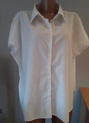 Элегантная блузка с кружевом большого размера
