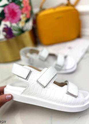Босоножки на липучках натуральная кожа на платформе тлетние сандалии сандали боссоножки рептилия питон белые1 фото