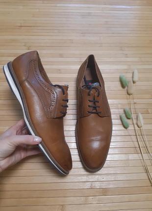Туфлі класичні lloyd