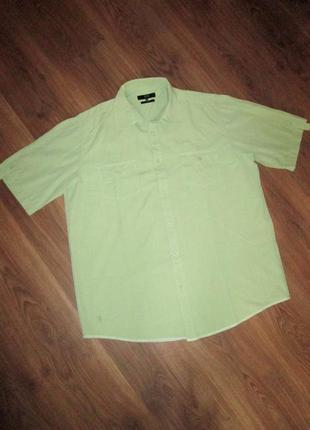 Светло-зеленая рубашка с коротким рукавом joy, размер l. пог 61,5 см