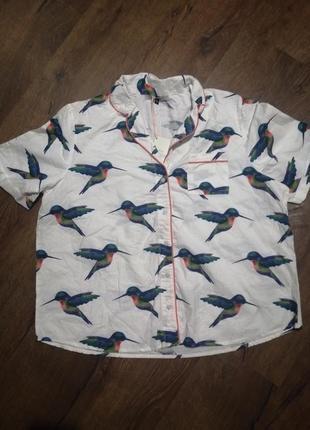Рубашка с птичками
