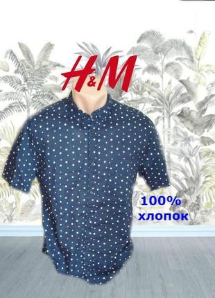 🌳h&m стильная легкая тонкая рубашка хлопок короткий рукав в горох  s 🌳