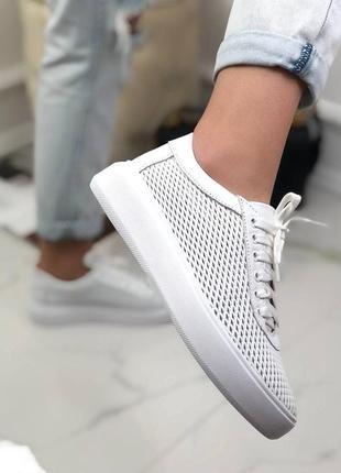 Базовые кеды кожа👟перфорация на шнурках