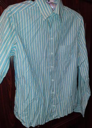 Женская голубая рубашка в полоску massimo dutti