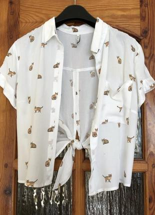 Кроп рубашка котики bershka