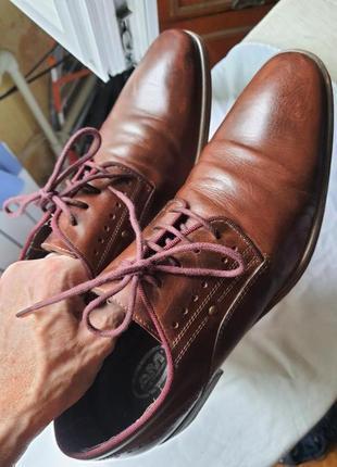 Шикарнейшие фирменные туфли am shoe company(германия) 41 размер5 фото