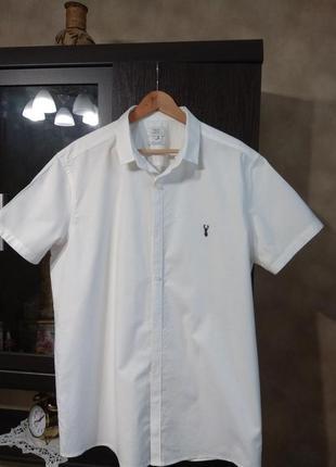 Хлопковая рубашка от next