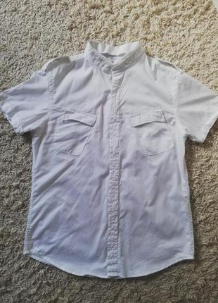 Хлопковая рубашка  allsaints