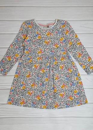 Платье нарядное тонкое катон длинный рукав цветы горох