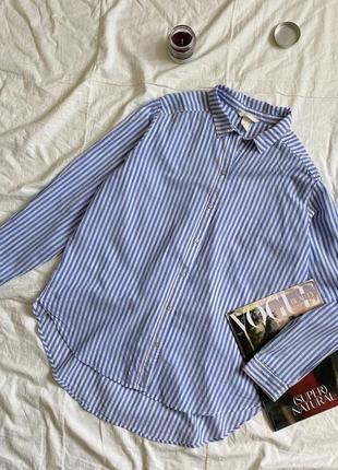 Хлопковая базовая рубашка в полоску полосатая