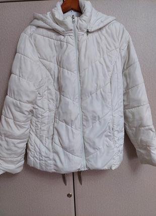 Куртка женская 44 -50 размер 200 грн