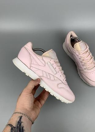 Reebok classic кроссовки / кеды / обувь