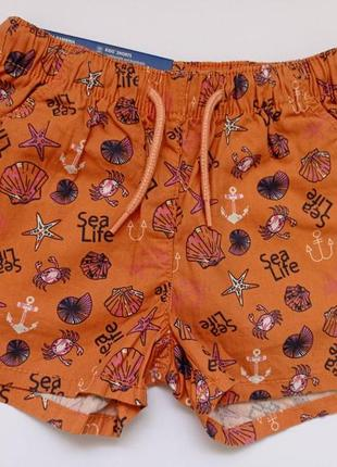 Хлопковые шорты для девочки lupilu р.98/104