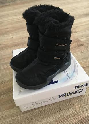 Зимние сапоги primigi