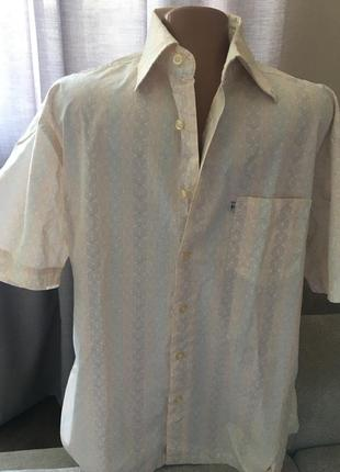 Рубашка мужская tom