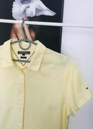 Tommy filfelger сорочка поло polo футболка котон