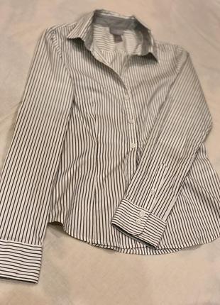 Сорочка  h&m (біла в чорну полосочку)