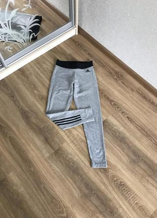 Серые лосины adidas