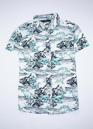 Рубашка динозавры