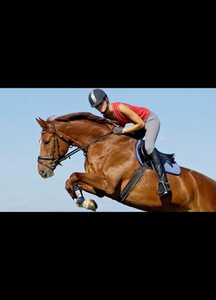 Конный спорт.леггинсы для верховой езды бриджи леггинсы ,black forest. арт.l152882