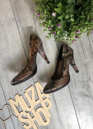 Шикарні туфлі зі змеїної кожи, італія, розмір 38