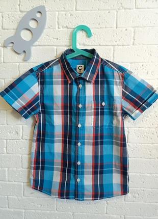 Яскрава рубашка для хлопчика 134 см