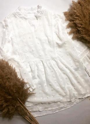 Молочная блуза сетка