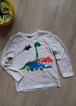 Реглан с динозаврами хлопок
