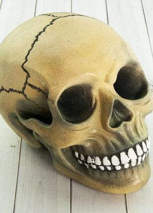 Копилка череп-стильный аксессуар для декора