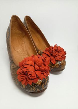 Брендовые туфли из змеиной кожи chie mihara (оригинал!)